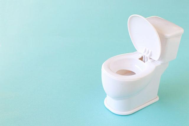 トイレの間違った使用方法