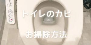 トイレのカビ掃除